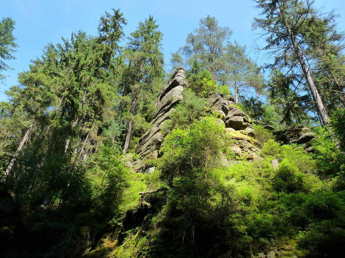 Ausflugsziele - Sächsische Schweiz